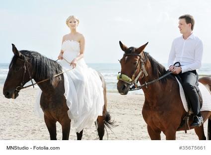 Hochzeitsgefa-hrt-Ritt-ins-Glu-ck
